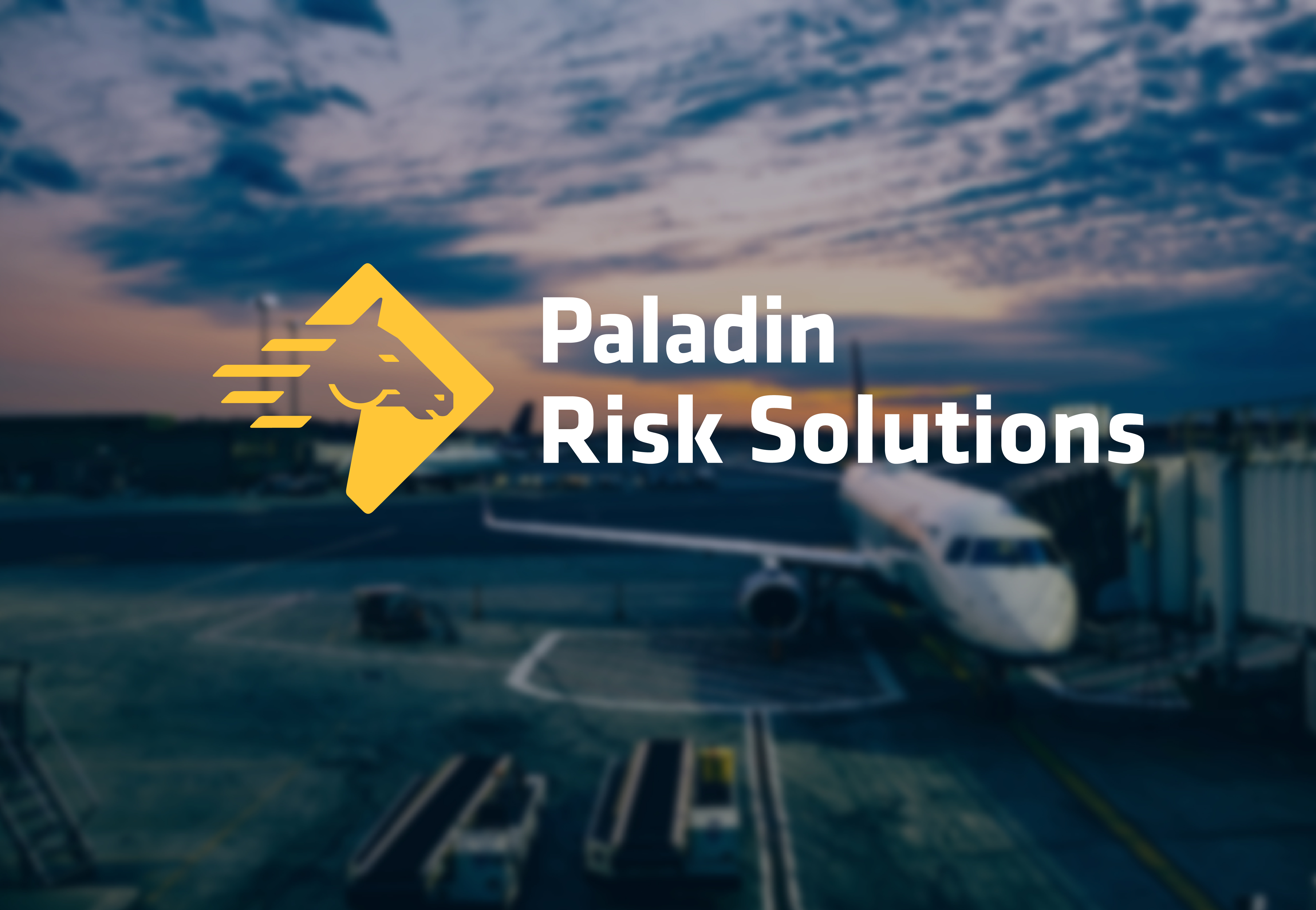https://paladinrisksolutions.com/wp-content/uploads/2019/11/PRSI-01.jpg